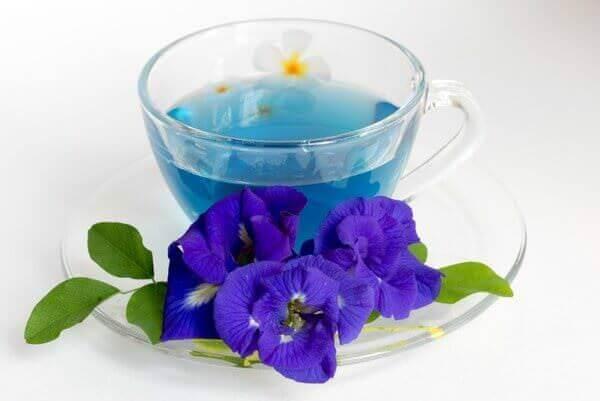 Синий чай или вся правда о чае из Тайланда
