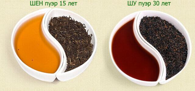 Два вида чая шен пуэр