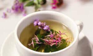 Чай с цветком иван чая