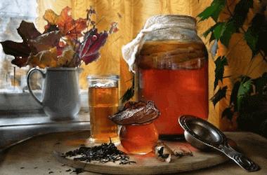 Все секреты чайного гриба в стеклянной банке