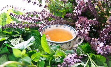 чай для похудения летящая ласточка купить украина
