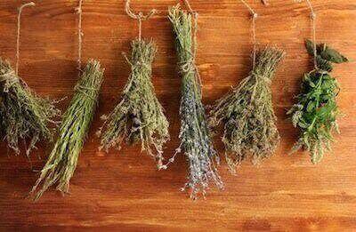 монастырская трава от паразитов