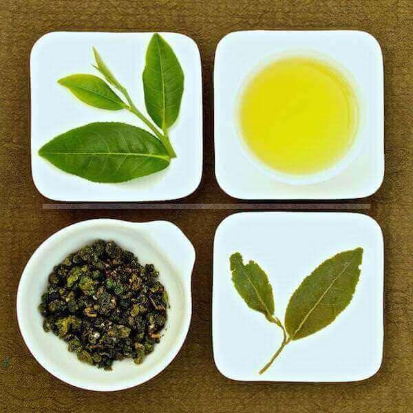 Листочки чая улун