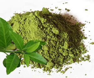 Принимать экстракт зеленого чая перед сном не рекомендуется