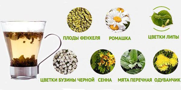 Травы, входящие в состав чая для похудения