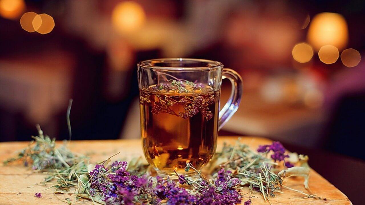 Что хорошего в чае с чабрецом