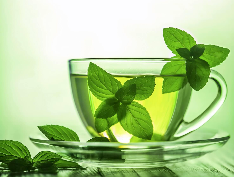 Что можно рассказать о мятном чае